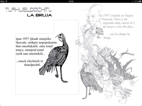Proyecto Náhuatl: La Bruja by Juan Moreno on Apple Books