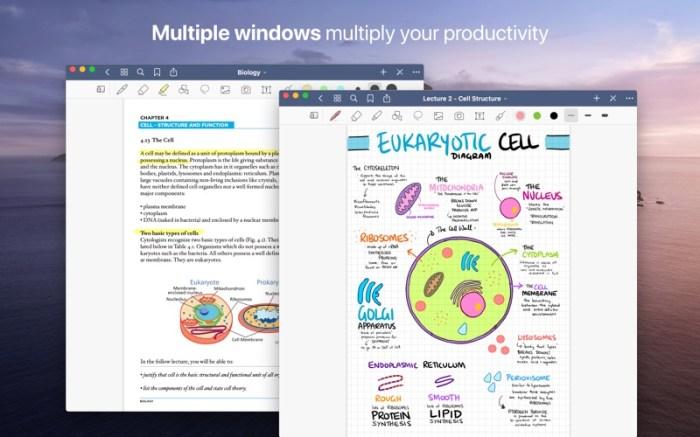 GoodNotes 5 - Notes & PDF Screenshot 03 ikzebvn