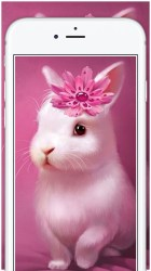 pink cute girly chat wallpapers backgrounds ipad iphone app