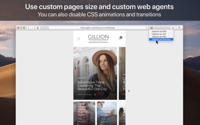 WebToLayers Screenshot 02 134ng3n