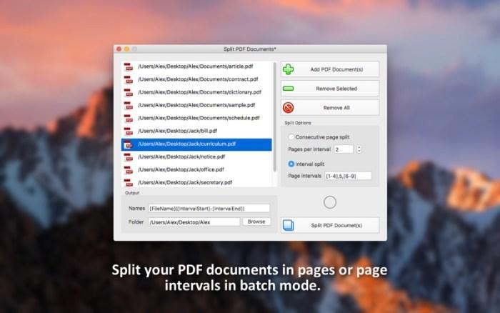 2_PDF_Plus_Merge_Split_PDFs.jpg