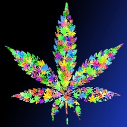 Sick Wallpapers For Iphone 5 3d Weed Wallpapers Hd Quotes By Xi Zhang