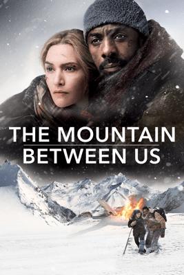 The Mountain Between Us - Hany Abu-Assad