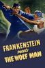 Roy William Neill - Frankenstein Meets the Wolf Man  artwork
