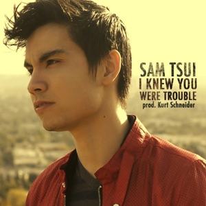 download mp3 heart attack sam tsui
