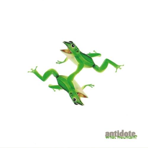 Antidote-What Mountain-CD-FLAC-1998-PsyCZ Download