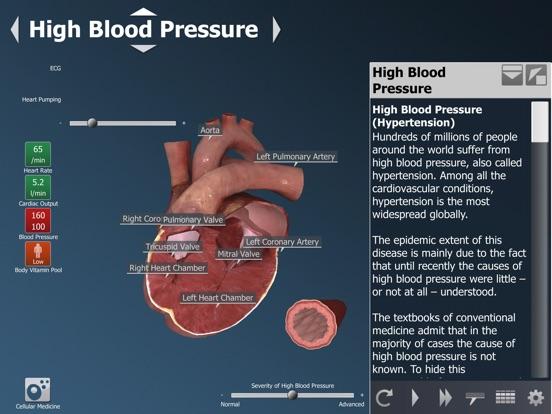 bodyxq heart Screenshot