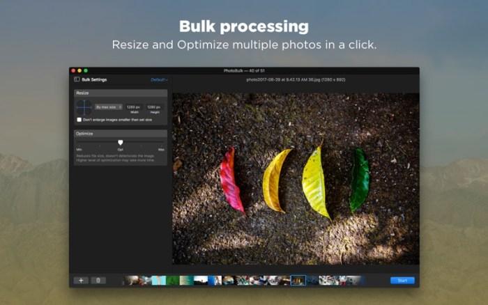 4_PhotoBulk_Bulk_Image_Editor.jpg