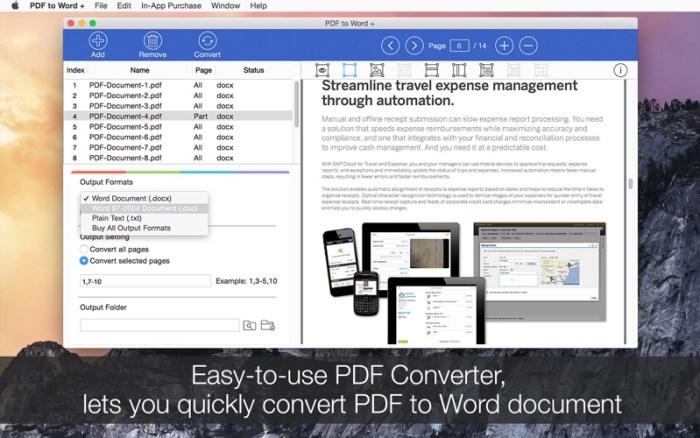 1_PDF_to_Word_.jpg