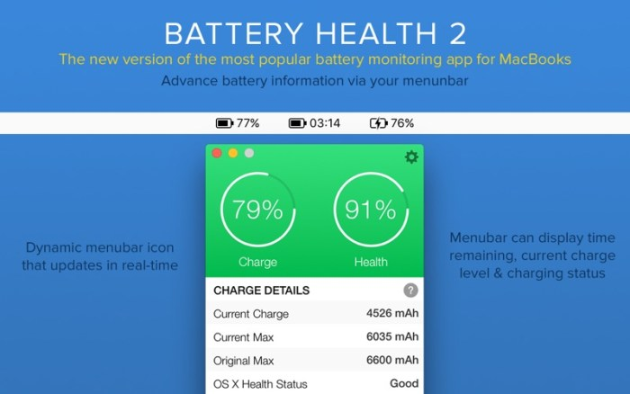 2_Battery_Health_2_Stats_Info.jpg