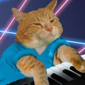 Keyboard Cat - Learn to Play Piano