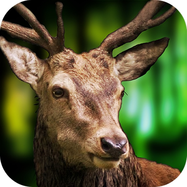 3D Deer Sniper Hunting Game 2017