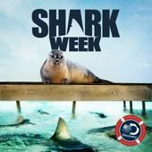 Shark Week - Shark Week, Season 29  artwork