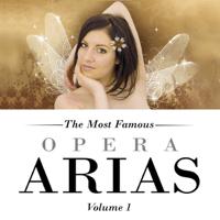 Mozart - the Magic Flute Capella Istropolitana