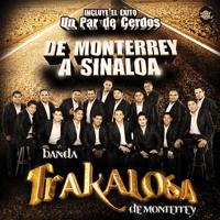 Borracho de Amor Edwin Luna y La Trakalosa de Monterrey MP3
