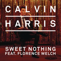Sweet Nothing (feat. Florence Welch) [Remixes] - EP - Calvin Harris mp3 download