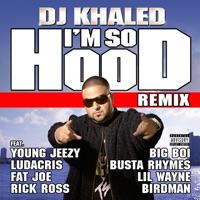 I'm So Hood (feat. Young Jeezy, Ludacris, Busta Rhymes, Big Boi, Lil Wayne, Fat Joe, Birdman & Rick Ross) [Remix] - Single - DJ Khaled mp3 download