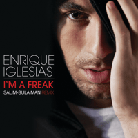 I'm a Freak (Salim-Sulaiman Remix) Enrique Iglesias
