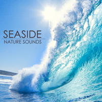 Seaside Nature Sounds Underwater Sounds Specialists