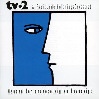 Bag Duggede Ruder - TV-2 mp3 download