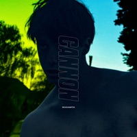 Cannon - Single - BROCKHAMPTON mp3 download