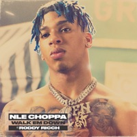 Walk Em Down (feat. Roddy Ricch) - Single - NLE Choppa mp3 download