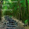 Craig Brown - Spring Sunshine  artwork