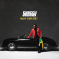 Free Download Shaggy You (feat. Alexander Stewart) Mp3