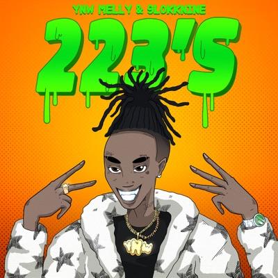 223's (feat. 9lokknine)-223's (feat. 9lokknine) - Single - YNW Melly mp3 download