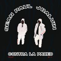 Sean Paul & J Balvin - Contra la Pared artwork