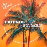 Friends (feat. Ashe) - Single - Big Gigantic mp3 download