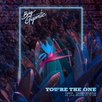 You're the One (feat. Nevve) - Single - Big Gigantic mp3 download