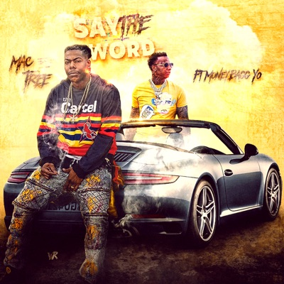 -Say the Word (feat. Moneybagg Yo) - Single - Mac Tree mp3 download