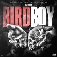 Birdboy - Single - NLE Choppa mp3 download