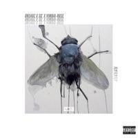 Fly (feat. SG' & Vimbai-Rose) - Single - Dreadz mp3 download
