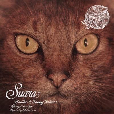 Always You (Shiba San Remix) - Bontan & Sonny Fodera mp3 download