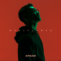 Wallflower - Afgan