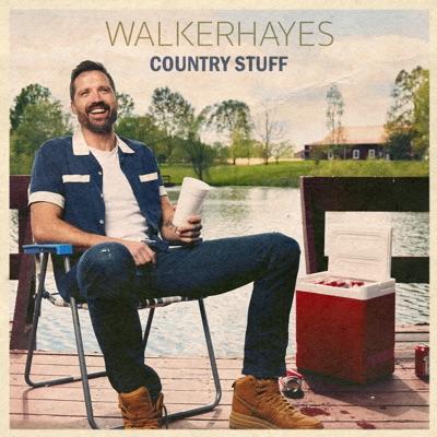 Fancy Like - Walker Hayes mp3 download