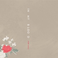 In My Blood (Portuguese Version) - Single - Shawn Mendes mp3 download