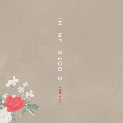 -In My Blood (Portuguese Version) - Single - Shawn Mendes mp3 download