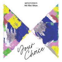 SEVENTEEN - Ready to love