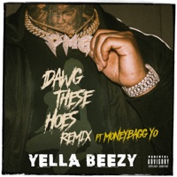 Dawg These Hoes (Remix) [feat. Moneybagg Yo] - Single - Yella Beezy mp3 download