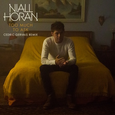 Too Much To Ask (Cedric Gervais Remix) - Niall Horan mp3 download