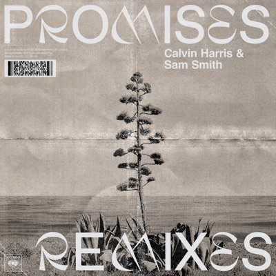 Promises (Remixes) - Calvin Harris, Sam Smith mp3 download
