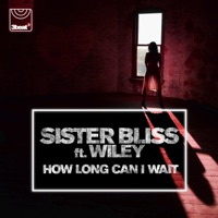 How Long Can I Wait (feat. Wiley) - EP - Sister Bliss mp3 download