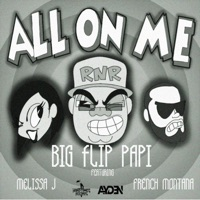 All on Me (feat. Melissa J. & French Montana) - Single - Big Flip Papi mp3 download