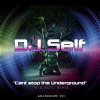 Cant Stop the Under Ground - Single - DJ Self mp3 download