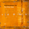 Tord Gustavsen Trio - The Other Side  artwork