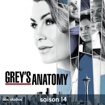 """Résultat de recherche d'images pour """"grey's anatomy saison 14"""""""