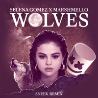 Wolves (Sneek Remix) - Single - Selena Gomez & Marshmello mp3 download